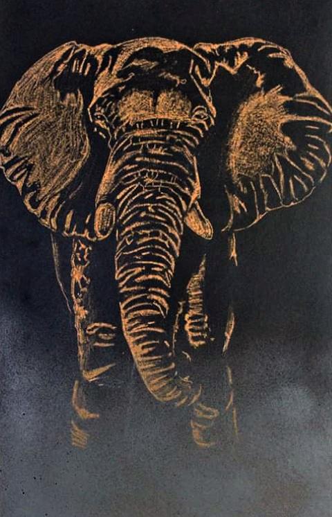 Elephant - A3 Canvas board - AS